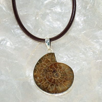 Ammonite-Large-Pendant